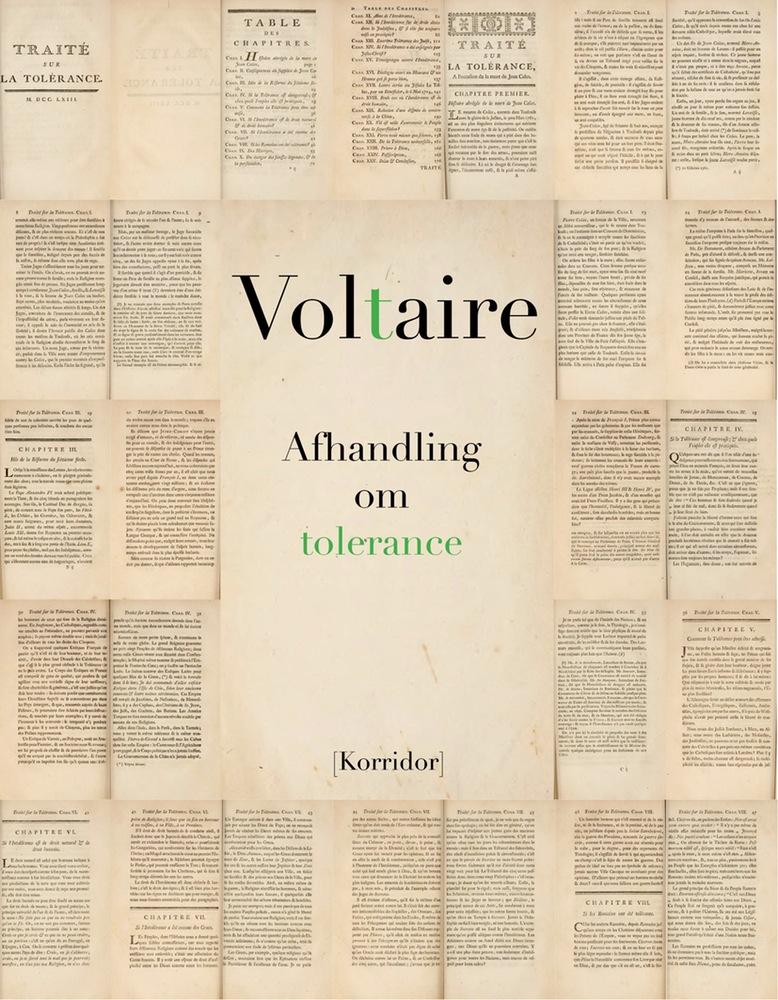 Voltaire_web1.1