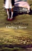 Den svenske forfatter Sara Stridsberg, som vandt Nordisk Råds Litteraturpris i 2007 for romanen 'Drømmefakultetet', har skrevet endnu en smuk, medrivende og overmådelig tragisk historie om en fortabt Lolita-piges liv og undergang.