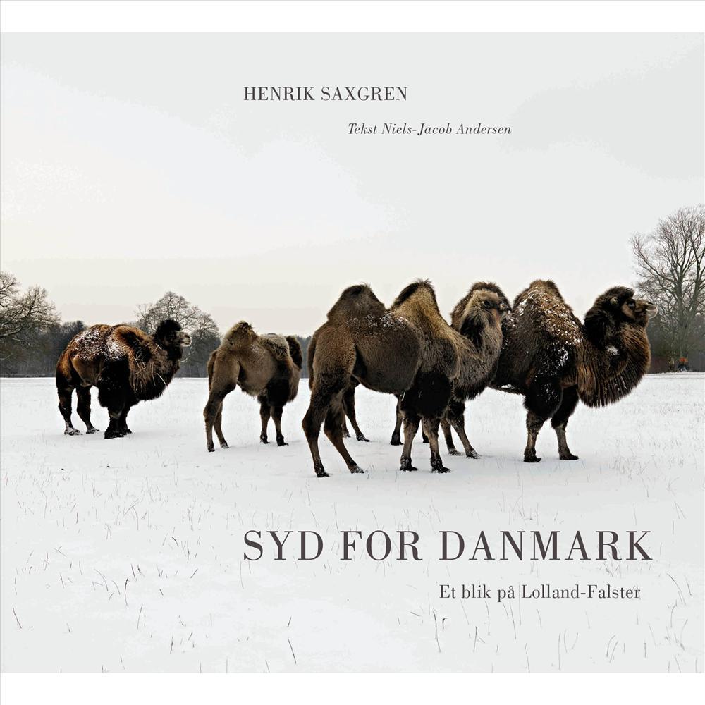 Syd for Danmark