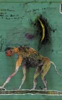 Ord, der ser sig i spejlet og får øje på et billede af en elefant, som bakker ud af et spindelvæv. Hvad behager? Jo, tak, billedet behager i den illustrerede digtsamling SPEJLE OG RØG, forfattet af digteren Rolf Steensig og bemalet af kunstneren Henrik Drescher. Lyrikken halter desværre lidt bagefter.