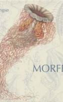 Niels Lyngsøs nye papkasse MORFEUS er et genresplit af en tekstsamling, der ikke er for litterære svagpissere. Konceptet er imponerende og den grafiske opsætnings æstetik er skiftevis smuk, underlig og nyskabende. Poetikken og poesiens udsagn halter dog bagefter.